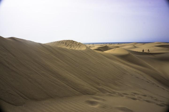 Dunes background